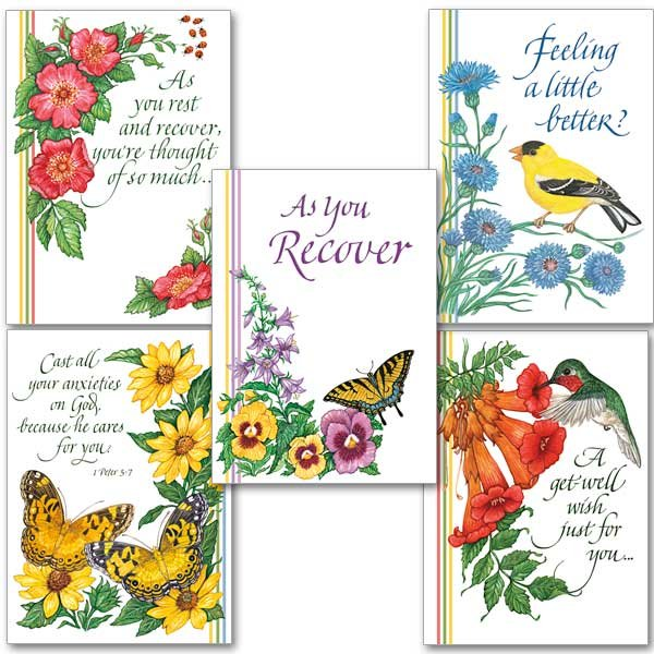 Get Well Cheer Collection- pack of 5 assorted get well cards