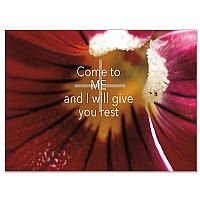 Come to Me Eternal Words Sympathy Card Pack of 10