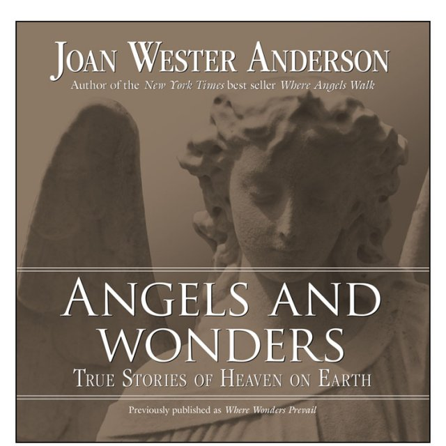 Angels and Wonders : True Stories of Heaven and Earth