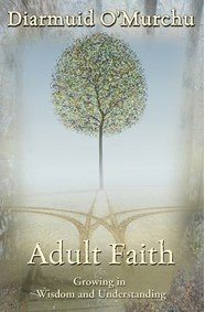 Adult Faith : Growing in Wisdom and Understanding