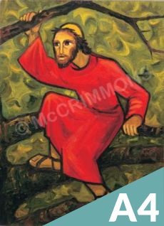 Jesus Our Hope Set of 12 A4 Posters laminated