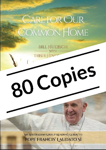 Care for Our Common Home: An Australian Group Reading Guide to Pope Francis' Laudato Si Pack of 80 copies