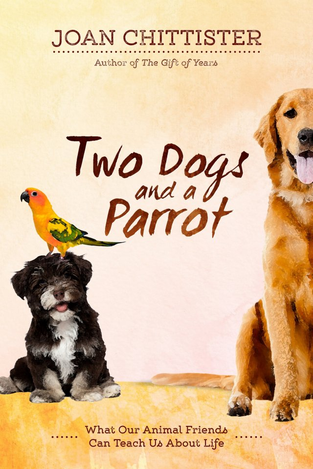 Two Dogs and a Parrot: What Our Animal Friends Can Teach Us About Life